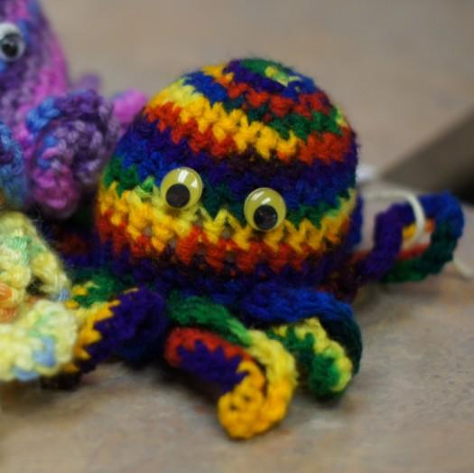 Octipet